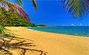 В песке на пляже скрываются сотни опасных инфекций