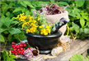 Cохранить красоту с целебными травами