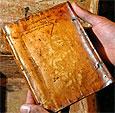 Книга из человеческой плоти обнаружена в библиотеке Гарвардского университета